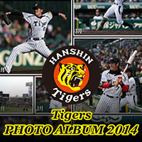 Tigers PHOTO ALBUM 2014