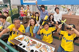 阪神甲子園球場(公式戦)|チケット|阪神タイガース公式サイト